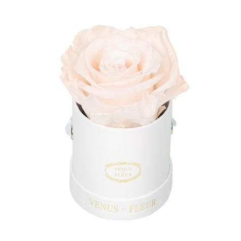 Lé Mini® Round Eternity® Rose