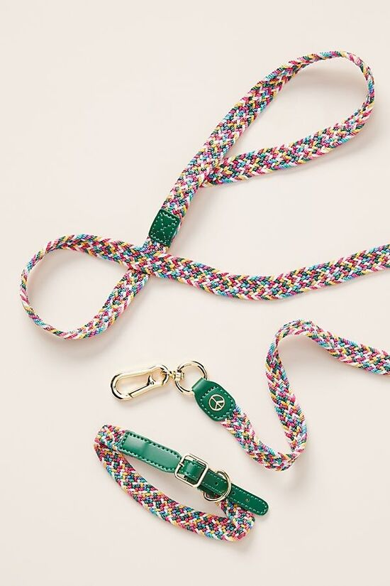 Willow Woven Dog Leash