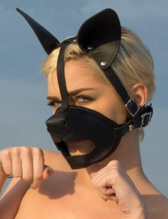 K9 Muzzle with Removable Silicone Ball Gag